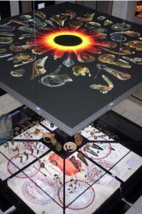 Die Inszenierung der Funde im Atrium